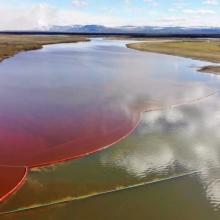 V. Putinas skelbia nepaprastąją padėtį: į Sibiro upę išsiliejo daugybė dyzelino