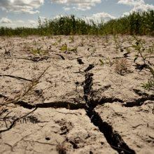 Hidrometeorologai: Lietuvoje daugės lietaus poplūdžių ir sausrų