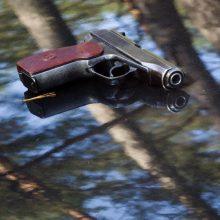 Miške Vilniuje rasti šaunamieji ginklai