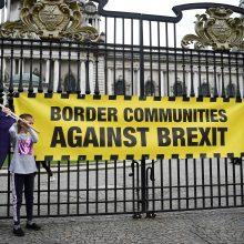 """Londono gatves užkimšę demonstrantai reikalavo naujo balsavimo dėl """"Brexit"""""""