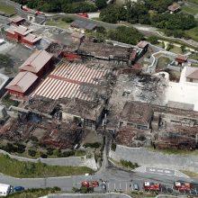 Japonijoje sudegė į Pasaulio paveldo sąrašą įtraukta pilis