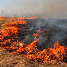 Gaižiūnų kariniame poligone degė miškas