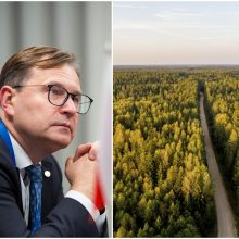 D. Žalimas: įsigaliojus KT nutarimui, gali sutrikti miškų valdymas ir tvarkymas