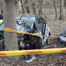 """Anykščių rajone girto vyro """"Honda"""" rėžėsi į pakelės medžius, nukentėjo keleivis"""