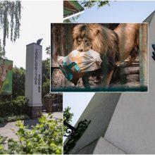 Zoologijos sodo rekonstrukcijos startas – jau netrukus: atskleidė, kiek kainuos