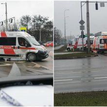 """Pas pacientą skubėjusį greitosios ekipažą sustabdė į jį rėžęsis """"Seat"""""""