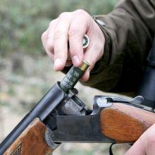 Vilkaviškio rajone iš namo nugvelbtas šautuvas