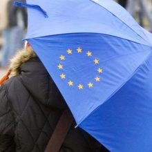 Seimas svarstys siūlymą plačiau atverti partijas užsieniečiams