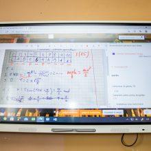 Kaunietė fizikos mokytoja karantiną išnaudoja kaip galimybę