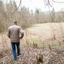 Pakarklės miškas – tikras lobynas: yra sakančių, kad čia Lietuvos Šveicarija