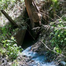 Spalvos: durpyno sausinimo kanalų vanduo būna melsvas, kakavinis, pilkšvas.