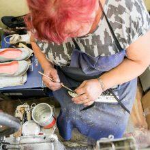 Ar amatininkams užtenka darbo?
