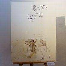 V. Starevičius: iš meilės skruzdėlėms ir vabalams