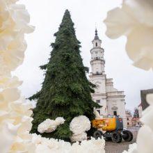 Saldžios dekoracijos – jau Rotušės aikštėje: pradėta puošti Kalėdų eglutė