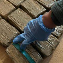 Juodojoje rinkoje 6 mln. eurų vertus narkotikus pavers pelenais