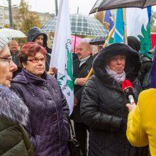 """Kauno rajono tarybos sprendimas vienbalsis: V. Matijošaičio planams – """"ne"""""""