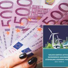 Ką veikti su 2,2 mlrd. eurų, reikia fantazijos