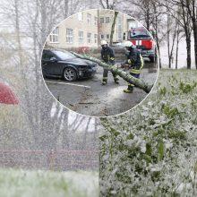 Orų šėlsmas pridarė daug bėdų: virtę medžiai trukdė eismui, aplamdė automobilius