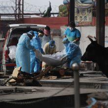 Koronaviruso atvejų šuolis Indijoje: aplenkė Italiją