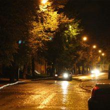 Savivaldybėms skirta beveik 12 mln. eurų gatvių apšvietimo sistemoms modernizuoti