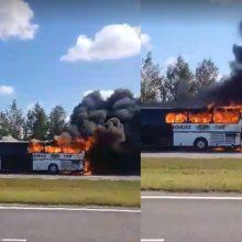 Palangos plente užsiliepsnojo autobusas