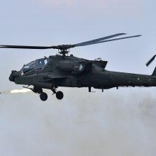 JAV – P. Korėjos karinės pratybos nėra būtinos