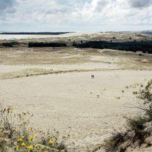 Parnidžio kopoje Nidoje – nauja regykla ir suoliukai