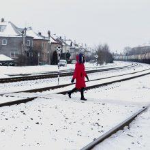 Sienelėms prie geležinkelio pažadėjo milijonus