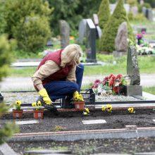 Nuvykus į kapines – šokas