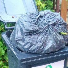 Žaliosios atliekos – be maišelių