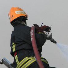 Vilkaviškio rajone sudegė automobilis: įtariamas padegimas