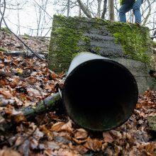 Šiemet aplinkosaugininkai gavo beveik 13 tūkst. pranešimų apie pažeidimus