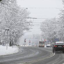 ESO: dėl pūgos ir sniego papildomų gedimų nefiksuojame