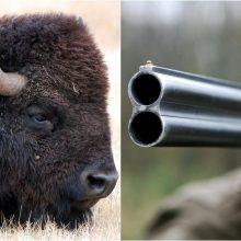 K. Mažeika sako medžioklės dalyvių nepažinojęs, bet planavęs juos paviešinti