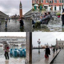 Venecijos viltis – technikos milžinas pranašo vardu