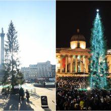 Londono Kalėdų eglė tapo pajuokos objektu