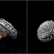 Rekordas: dizaineris žiedą nusagstė 12 tūkst. deimantų