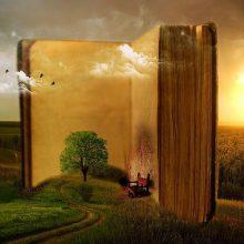 Kokias knygas verta perskaityti? <span style=color:red;>(apžvalgos)</span>