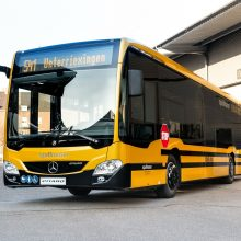 Autobuse – lyg atogrąžų miške