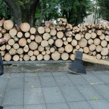 Teismas iliuzijų miškininkams nesuteikė: sprendimas nėra precedentas