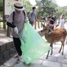 Japonijoje prisiriję plastiko nugaišo devyni elniai