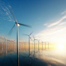 Dėl vėjo elektrinių jūroje ties Palanga meras Š. Vaitkus kreipėsi į valstybės vadovus