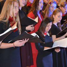 Muzikalūs moksleiviai nepasiduoda karantino iššūkiams