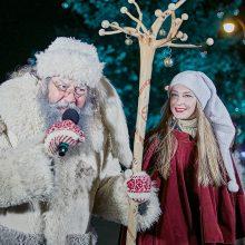 Senelis Kalėda Rokiškyje įžiebė eglutę