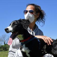 Mokslininkai išmokė šunis atpažinti COVID-19 pacientų kvapą