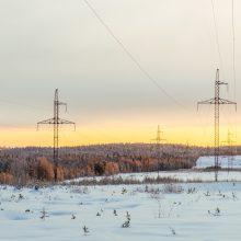 """Litgrid"": elektros kaina pastarąją savaitę augo 36 proc."