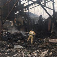 Rusijoje po sprogimo ir gaisro parako fabrike patvirtinta 16 žmonių žūtis