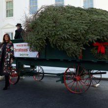 M. Trump oficialiai priėmė į Baltuosius rūmus atvežtą Kalėdų eglę