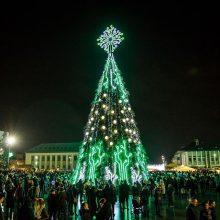 Marijampolėje sušvito Kalėdų eglė