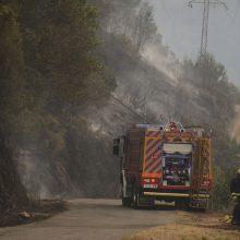 Ispanijoje kariai ir lėktuvai kovoja su miškų gaisrais